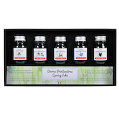 Herbin Seasons 5 Piece Assorted Ink Set Spring