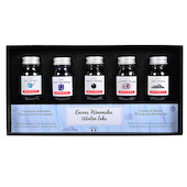 Herbin Seasons 5 Piece Assorted Ink Set Winter
