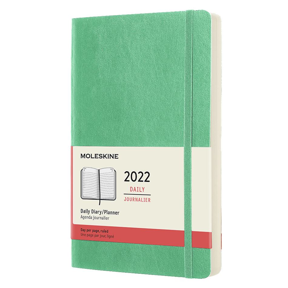 Moleskine Softcover Large Daily Diary 2022 Ice Green